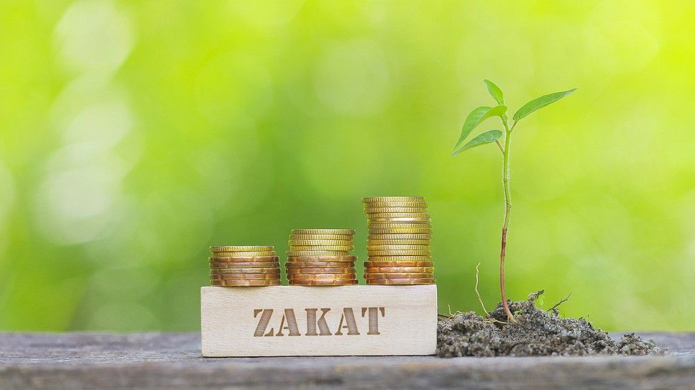 b2ap3_large_what_is_zakat Zakat: What is it and How much should I pay? - Blog