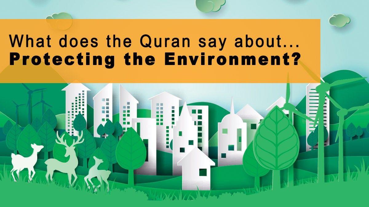 b2ap3_large_quran_protecting_environment What Does the Quran Say about Protecting the Environment? - Blog