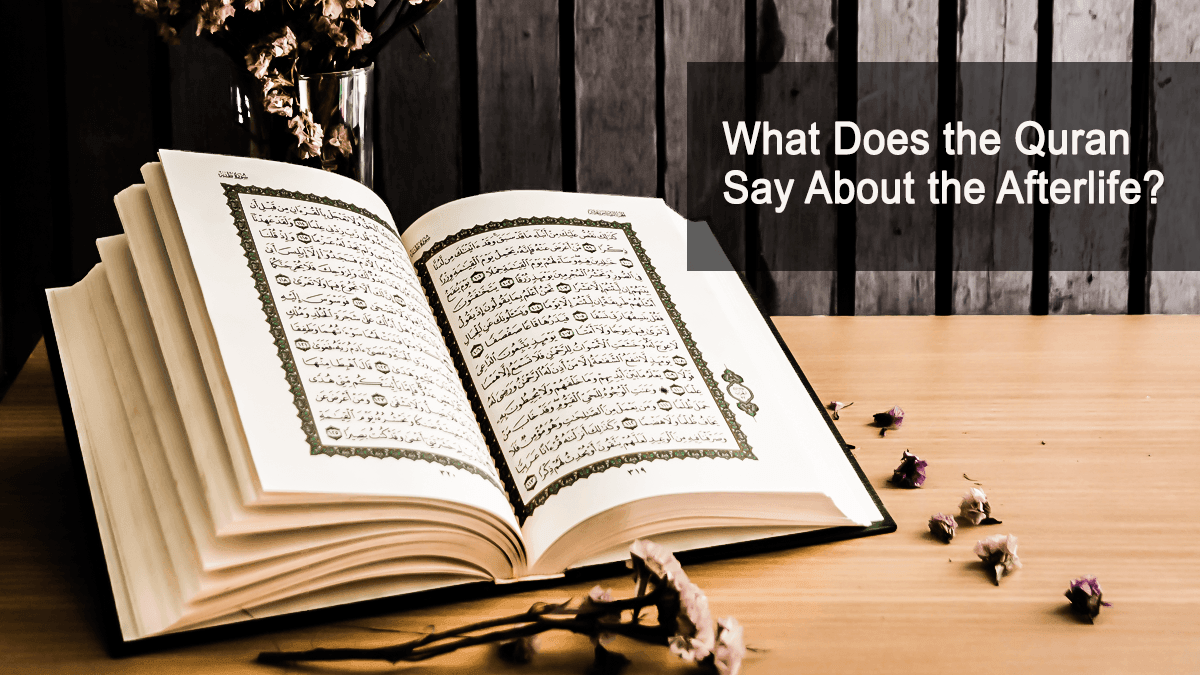 b2ap3_large_49 What Does The Quran Say About The Afterlife? - Blog